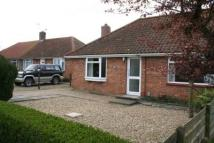 Semi-Detached Bungalow to rent in Addey Close, Sprowston...