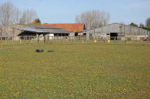 Farm Land in Land and buildings at for sale