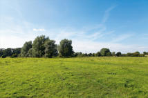 Land in LOT 2 - Grange Farm...