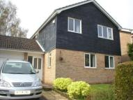 Detached house to rent in The Ridings, Cringleford