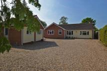 4 bed Detached Bungalow for sale in LONG STRATTON