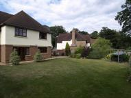 5 bedroom Detached house in Hawley Grove, Blackwater...