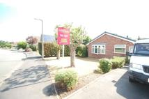 Bungalow to rent in Park Road...