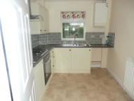 3 bedroom semi detached house to rent in Holm Oaks, Butleigh, BA6