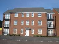Flat to rent in Lime Tree Grove...