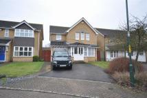 4 bed Detached home to rent in Grizedale Close...