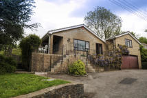 Detached Bungalow for sale in Mendip Road...