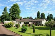 Detached Bungalow for sale in Green Shadows...
