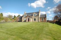 Detached property for sale in Forge Field, Lennel...