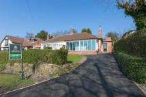 2 bed Semi-Detached Bungalow in Wood Lane, Parbold...