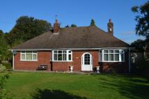 Detached Bungalow in Warrington Road...