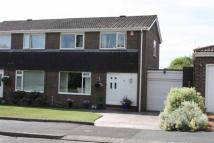 2 bedroom semi detached house for sale in Rowan Drive, Ponteland