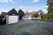 3 bed Semi-Detached Bungalow for sale in Cauldwell Lane...