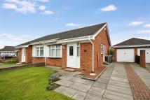 Semi-Detached Bungalow in Holland Park, Wallsend