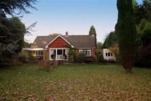 Detached Bungalow to rent in Ponteland Newcastle Upon...