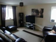 2 bed Flat to rent in Glanyrafon...