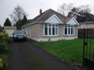 Bungalow to rent in Maes y Gwernen Road...