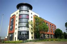 1 bedroom Apartment in Flanders Court...