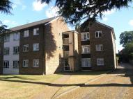 Flat in Culloden Road, Enfield...