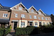 Terraced property to rent in Chelmsford Road...