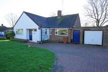 3 bedroom Detached Bungalow in Hawkhurst