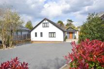 property in Guildford