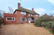 3 bed semi detached property for sale in Elstead