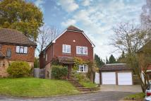 Chiddingfold Detached house for sale