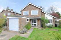 3 bedroom Detached house in Busbridge