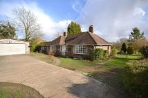 4 bedroom Detached Bungalow in Rudgwick