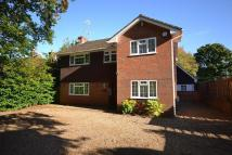 Detached house in Cranleigh