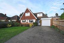 3 bed Detached property for sale in Farnham