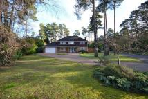 Detached property for sale in Ewshot
