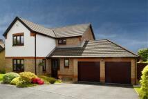 4 bedroom Detached house in Bryn Rhedyn, Tonteg
