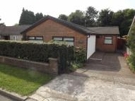 Detached Bungalow in Llan Avenue, Rhydyfelin