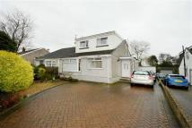 Red Roofs Close Semi-Detached Bungalow for sale