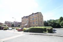 Carew Court Flat to rent