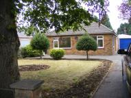 Detached Bungalow to rent in 52, Station Road, Kirton...
