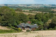 4 bedroom Cottage in Godshill, Isle Of Wight