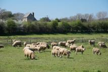 Farm House for sale in Arreton, Isle Of Wight