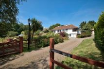 6 bed Detached home for sale in Rookley, Isle Of Wight