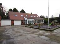 4 bedroom home in Crosland Road South...
