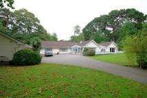 4 bedroom Detached Bungalow for sale in Pine Drive...