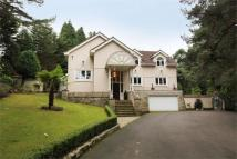 6 bedroom Detached home in BRANKSOME PARK, Poole...