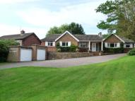 Bridle Road Detached Bungalow to rent