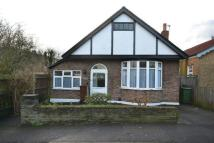 Detached Bungalow to rent in Church Avenue...