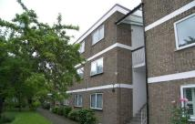 Flat in The Avenue, Highams Park