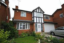 Detached house for sale in East Hunsbury