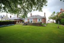 4 bed Bungalow for sale in Oborne Road, Sherborne...