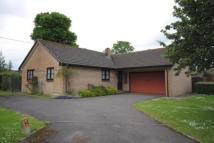 3 bed Bungalow for sale in The Paddocks, Thornford...